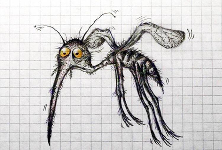 Эти 8 запахов заставят комара отказаться от вашей крови