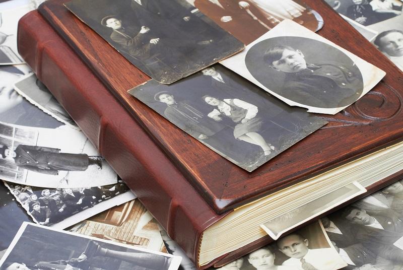 генеалогическое древо картинки