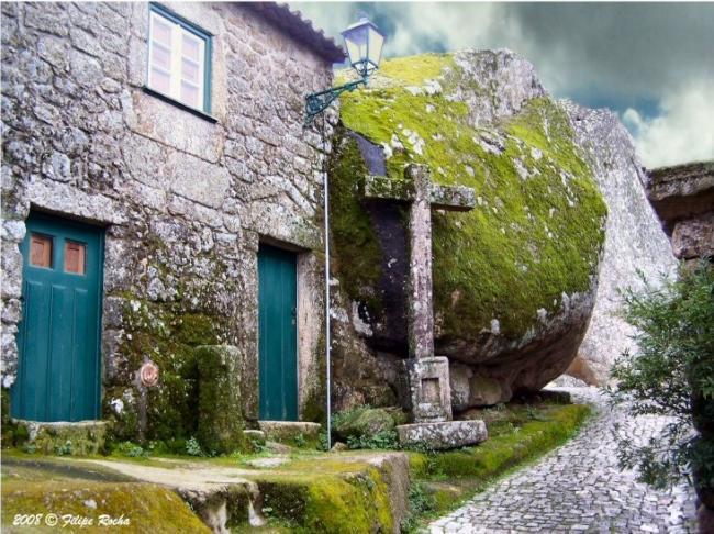 Жизнь среди камней