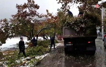 В Новосибирске ликвидируют последствия снегопада