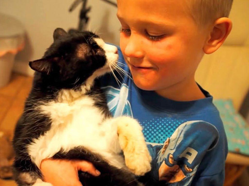 20-летний кот обрел любящую семью. Эти кадры тронут вас до глубины души