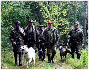 Правила коллективной охоты: особенности, продвижение к месту охоты, сигналы
