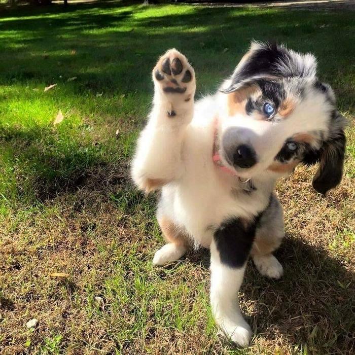 Всем привет!