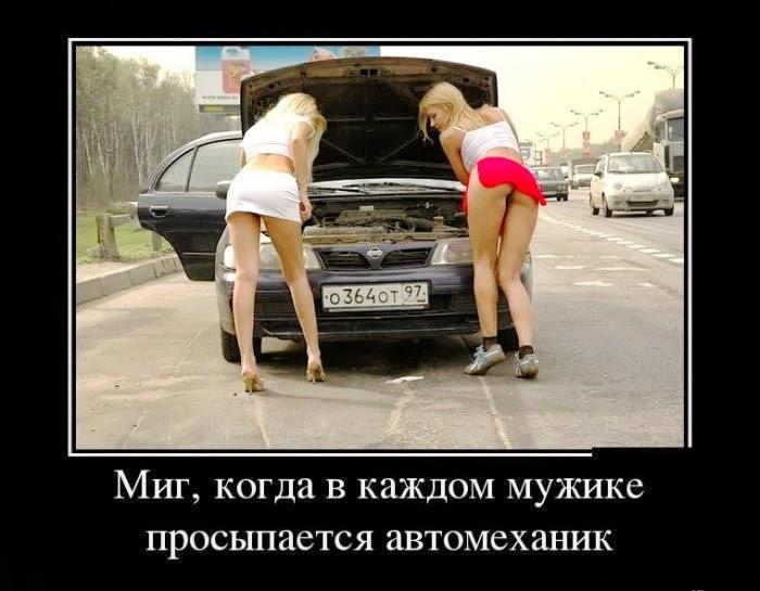 Главная молдова единцы