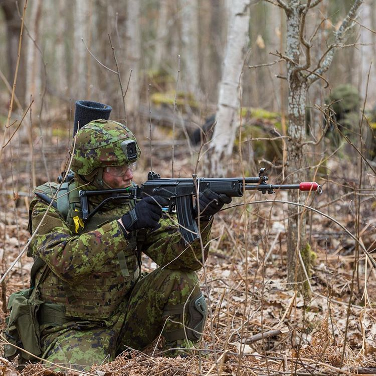 Эстония объявляет тендер на новые автоматические винтовки