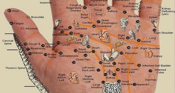 Нажимайте на эти точки в зависимости от того, что у Вас болит — Каждая часть тела находится на ладони вашей руки