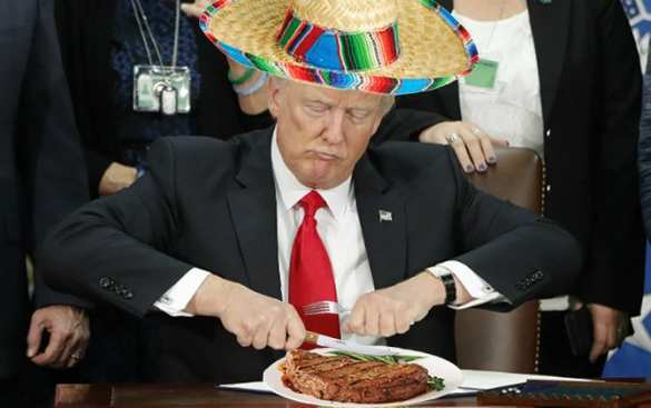 Фото Дональда Трампа стало забавным мемом (ФОТО)