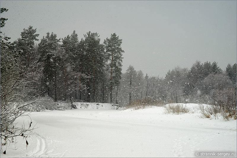 Почему стихов о зиме больше, чем о лете