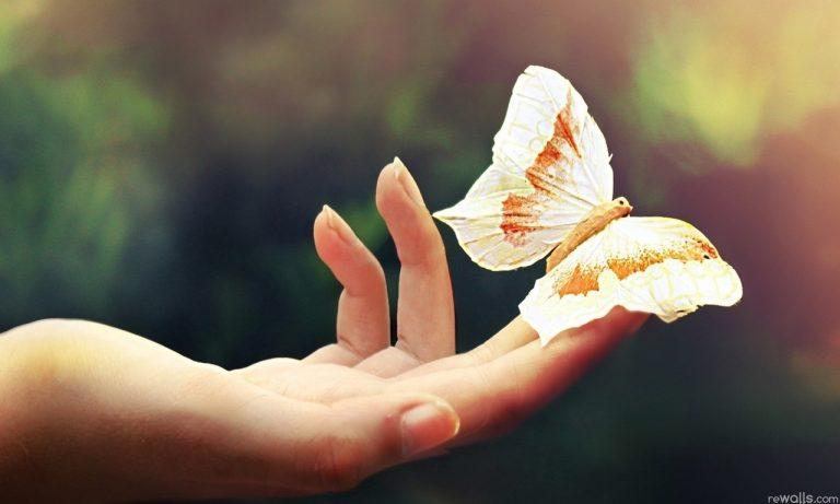 10 бесценных советов, которые помогут Вам изменить свою жизнь