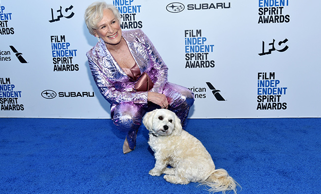 Independent Spirit Awards: как собака Глен Клоуз затмила Хлою Морец, Дакоту Джонсон и других звезд премии