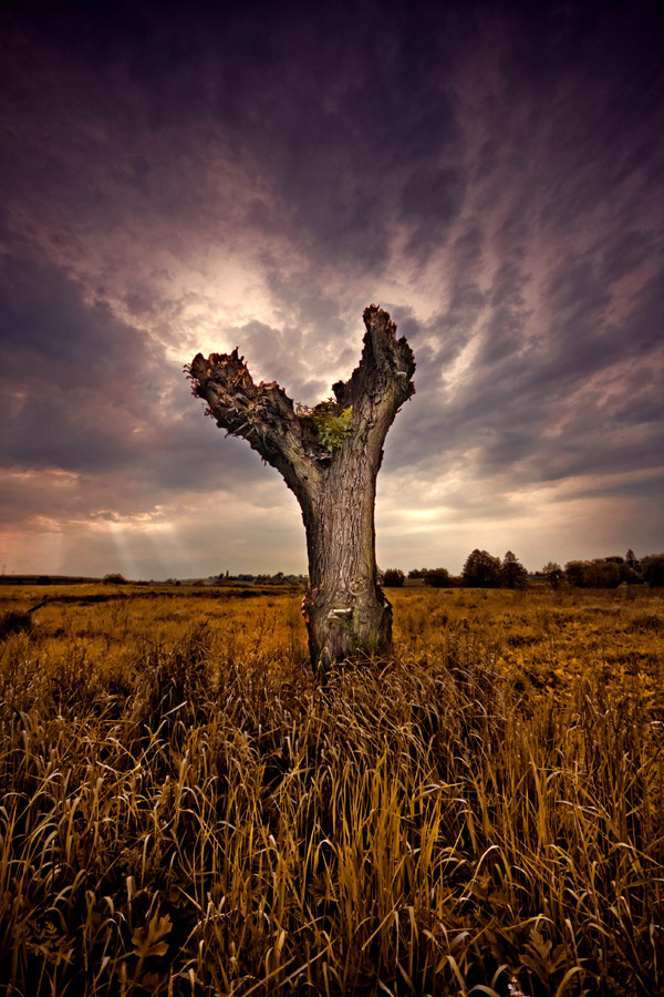 Фотография ...Y... автор Piotr Poreba на 500px