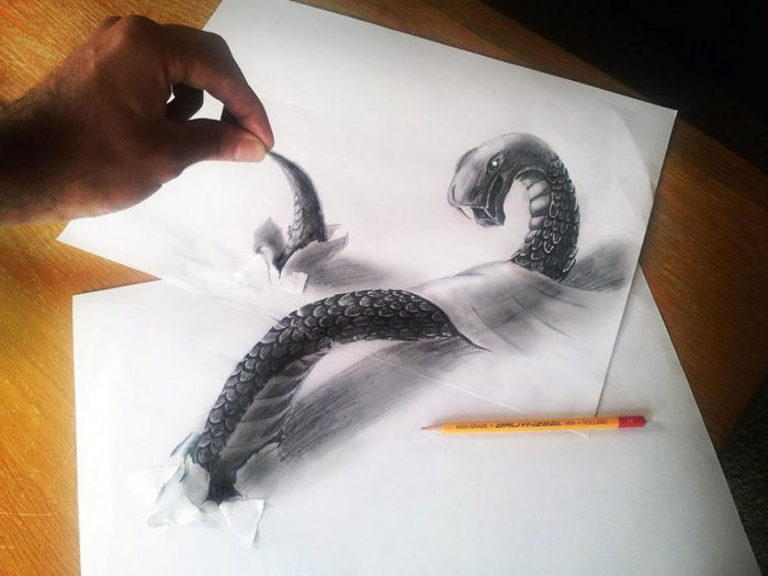 Потрясающие 3D-рисунки каран…