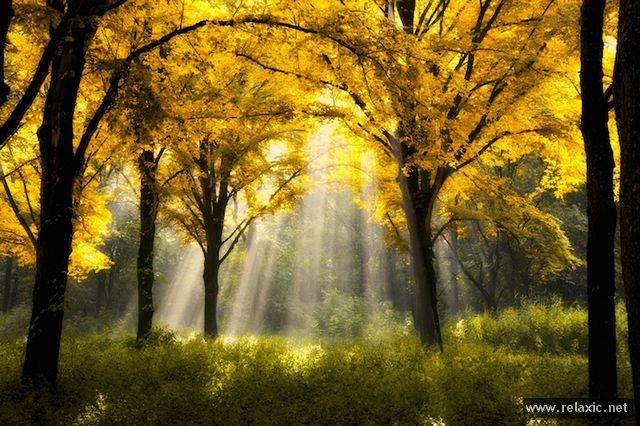 Sun_rays_002