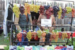 Сколько вина получится из ведра винограда?