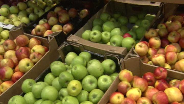 МИД Польши: если Россия снова купит наши яблоки, мы перестанем ее бояться