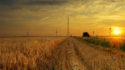 Российские власти тормозят экспорт 3 млн тонн зерна