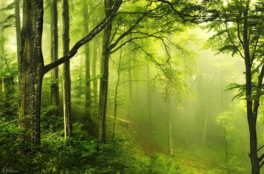 Мистическая красота природы