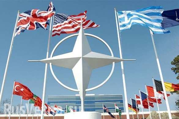 НАТО учится убивать русских в Прибалтике