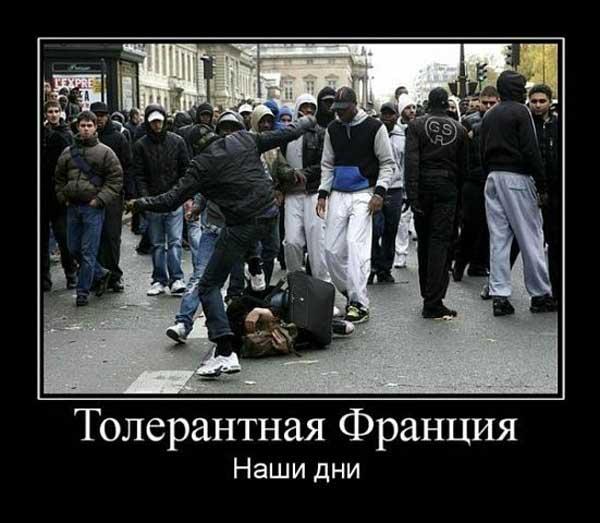 Иностранцы о толерастии:тупая безмозглая покорность приводит к шизофрении общества