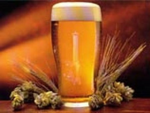 Пиво признали омолаживающим напитком