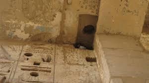 Шамир - загадочный древний инструмент для обработки камня
