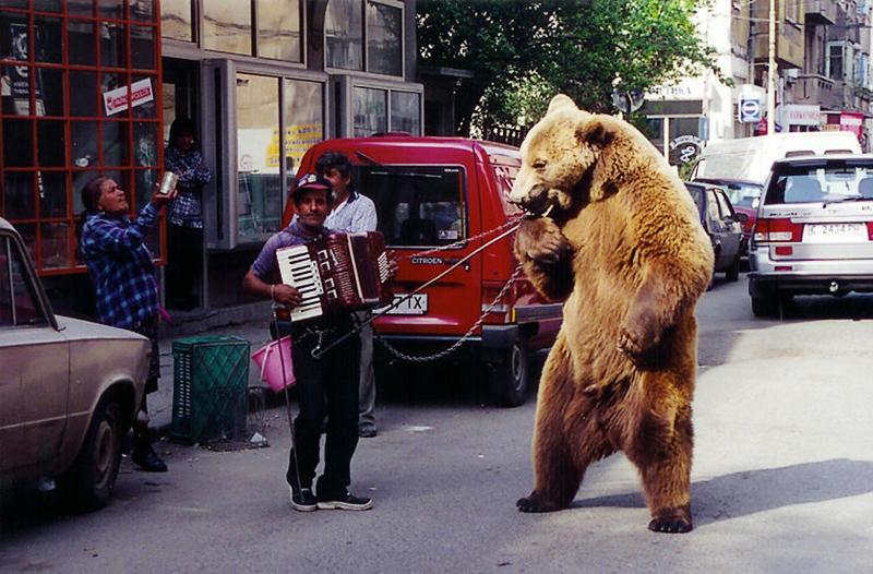 Собираешься в Болгарию? Вот чего нельзя делать в этой стране!