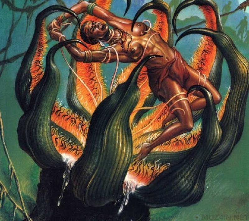 Африканское дерево-людоед было завезено пришельцами
