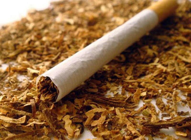 Смертельная доза никотина вред, факты, человек