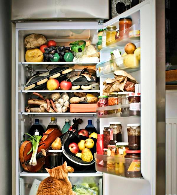 УЗЕЛОК НА ПАМЯТЬ. Уборка холодильника