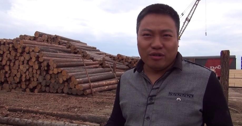 Рослесхоз предложил запретить скупку леса в Сибири и на Дальнем Востоке китайскими предпринимателями