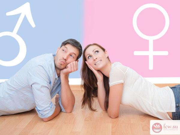 В чем отличие мужской и женс…