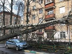 Вторая волна урагана ударила по столичному региону