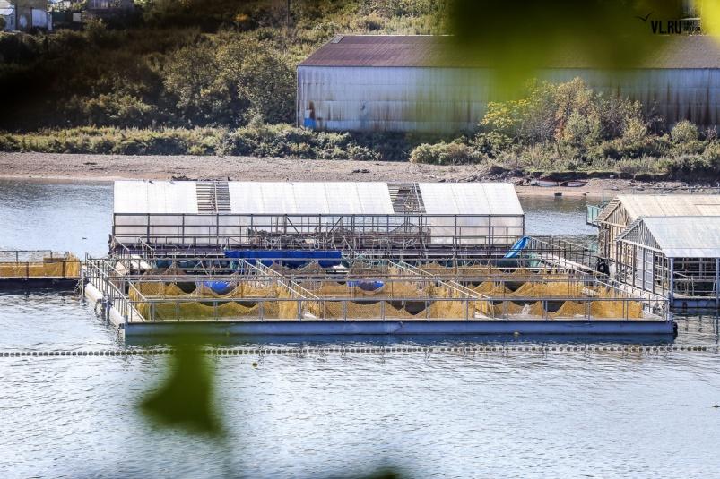 Тюрьма для китов: больше сот…