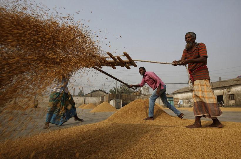 25 впечатляющих фото из жизни Бангладеша, самой густонаселенной страны в мире
