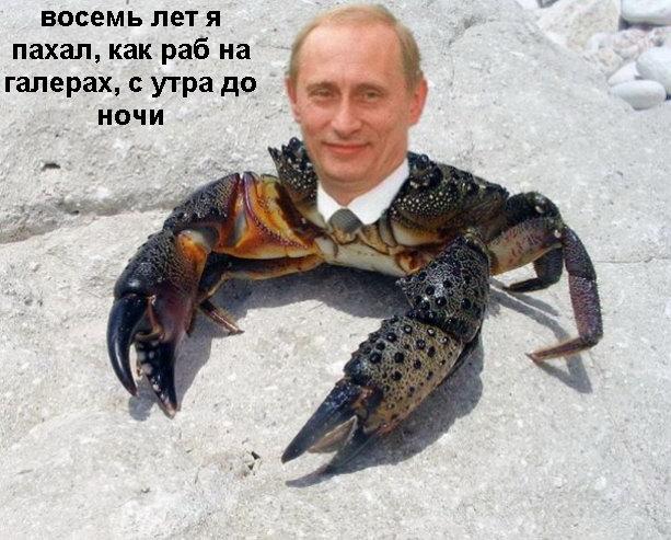 Путин-Краб. 5 не политических фактов о жизни Путина