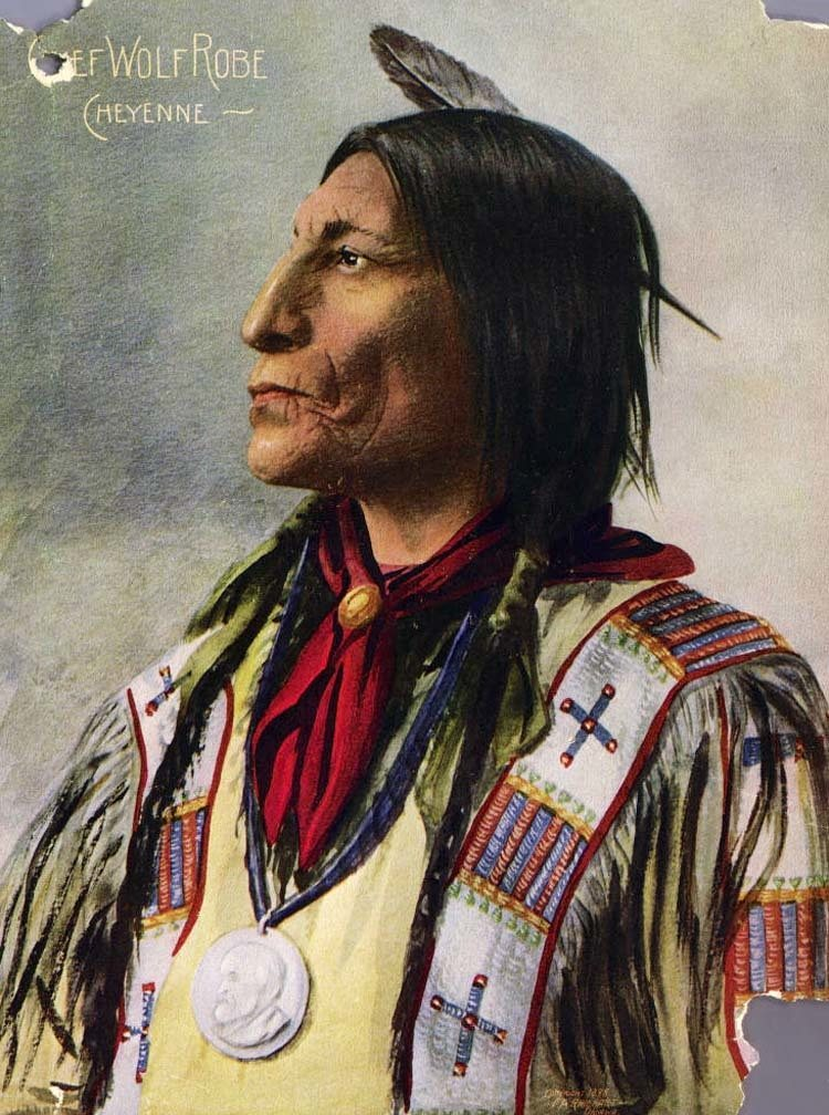 native-american-wolf-robe.jpg