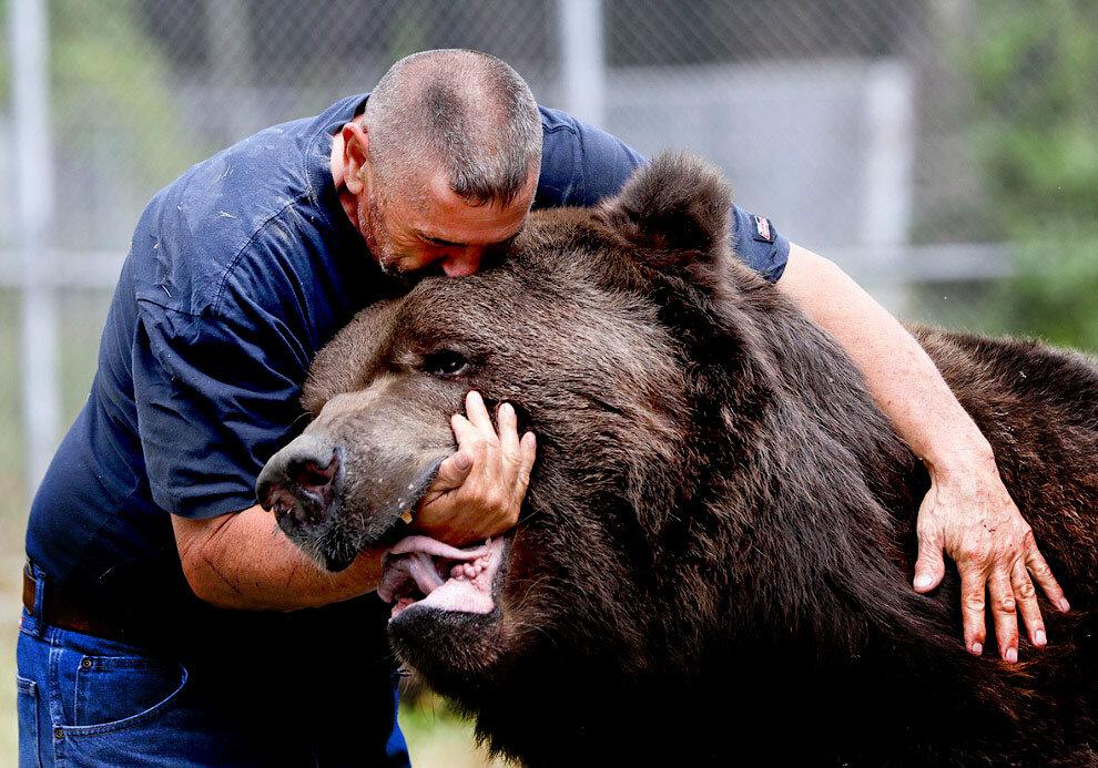 Феноменальная дружба человека и бурого медведя длиною 24 года удивляет и радует сердце