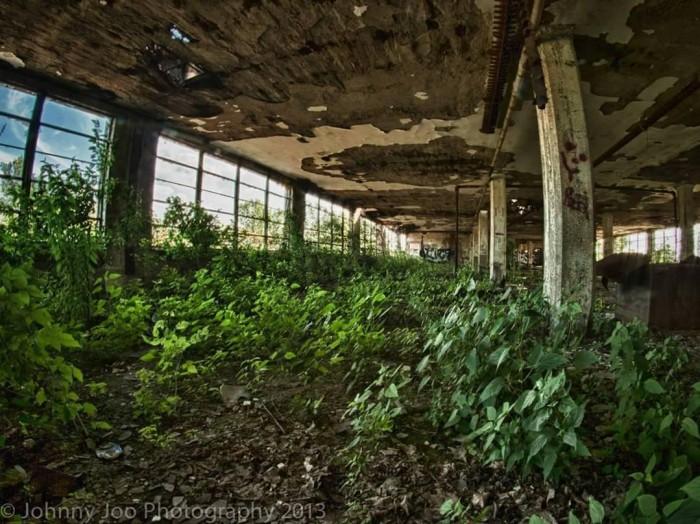 Заброшенные места, отвоёванные природой