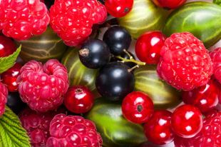 Налегаем на витамины. Полезные свойства и противопоказания ягод