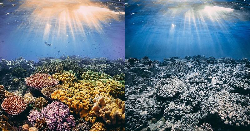 Разрушительное человечество: как могли выглядеть природные чудеса, если бы их не касались руки человека