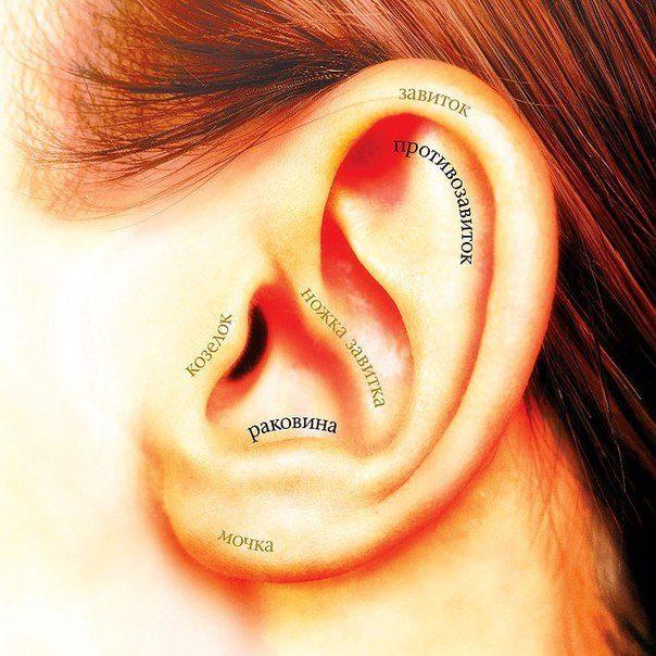 Зарядка для ушей, которая бодрит лучше кофе
