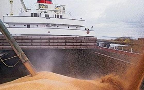 Россия начала экспортные поставки пшеницы вВенесуэлу