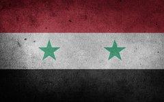 Россияне высказались за оказание военной поддержки Сирии против США