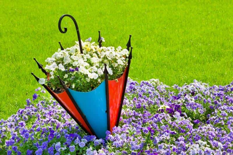 Клумба-зонт изготовленная из фанеры либо пластика прослужит вам долго
