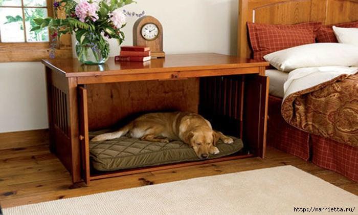 Как обустроить место для собаки в квартире