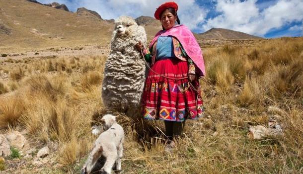 В Перу за убийство шаманки л…