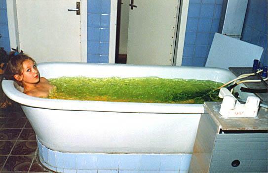 Лечебные ванны при артрозах и остеоартрозах (рецепты народной медицины)