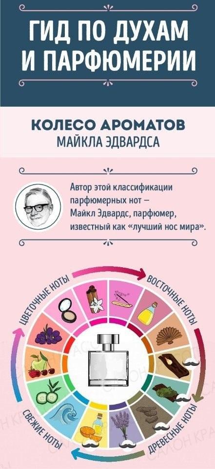 Гид по духам и парфюмерии: 10 потрясающих советов для женщин