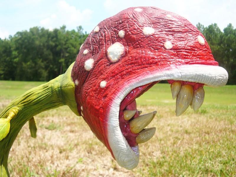 5 растений, которые поражают воображение