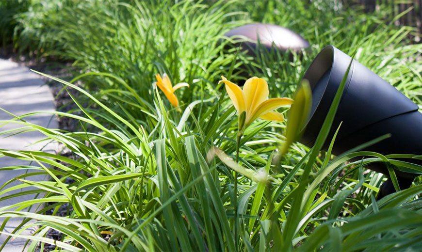 Поющие камни, или ландшафтный звук в саду